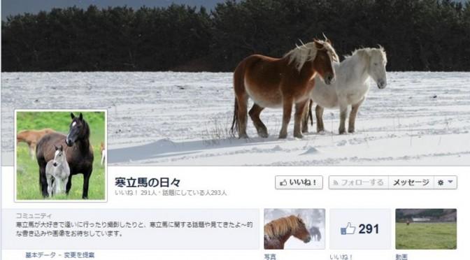 青森県下北半島のお馬様、『寒立馬(かんだちめ)』のこと