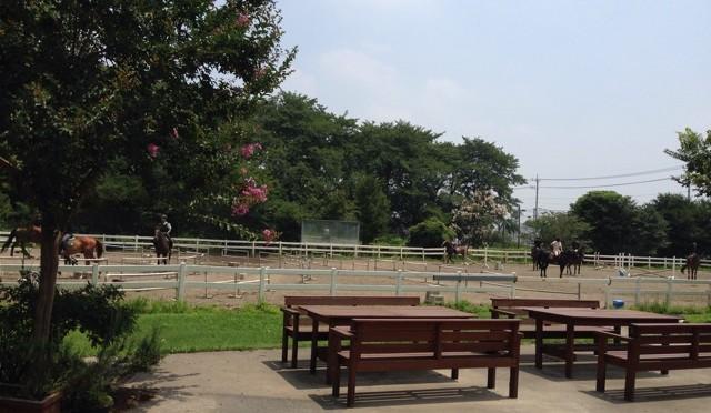 乗馬クラブクレインで体験乗馬 その1(大手乗馬クラブ体験)