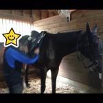 47鞍目(前編)-先生の馬装を見学の巻
