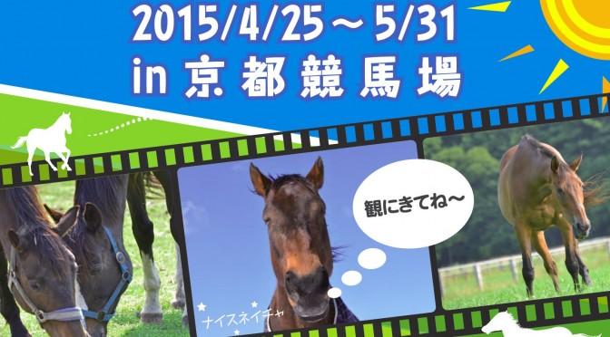 【京都の皆様!】引退馬写真展!第3弾は京都競馬場です!