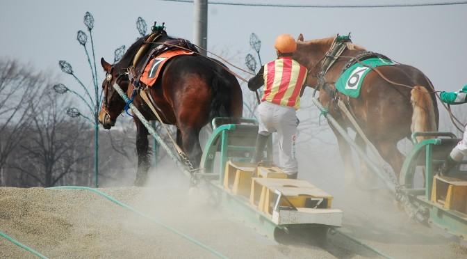 【馬旅】北海道2日目 ばんえい競馬 in 帯広競馬場(パドック&レース編)