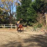 86鞍目-蹄跡の内側を軽速歩の巻