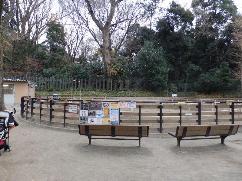 代々木ポニー公園
