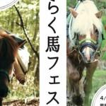 【4/30〜5/1】はたらく馬フェス開催!