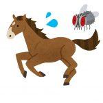 150鞍目‐ハエにイライラする馬…の巻
