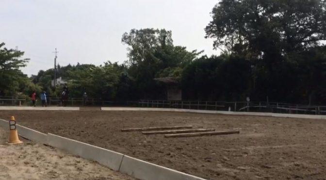 191鞍目②-4回目の経路練習(乗馬ライセンス3級)