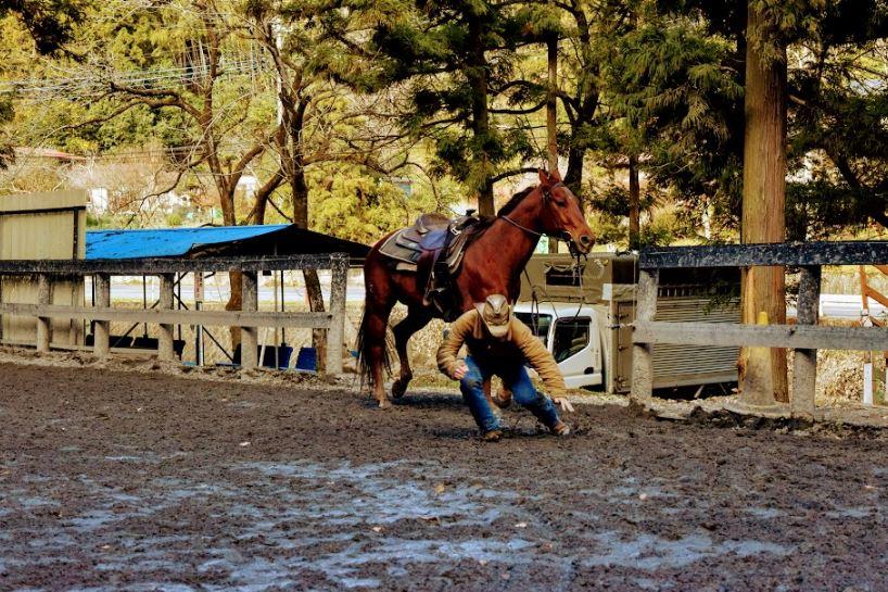 落馬練習シーン