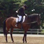 201鞍目‐乗馬ライセンス3級試験、ついに本番!