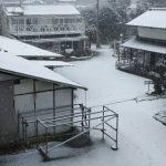 233鞍目-雪が積もった日、レッスンは受けるべき?